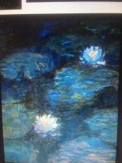 lilies 3