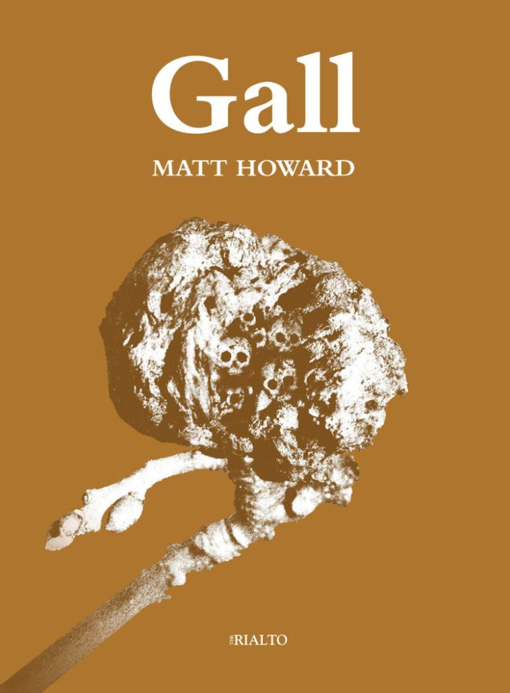 Gall-cover-Matt-Howard-1200px-755x1024